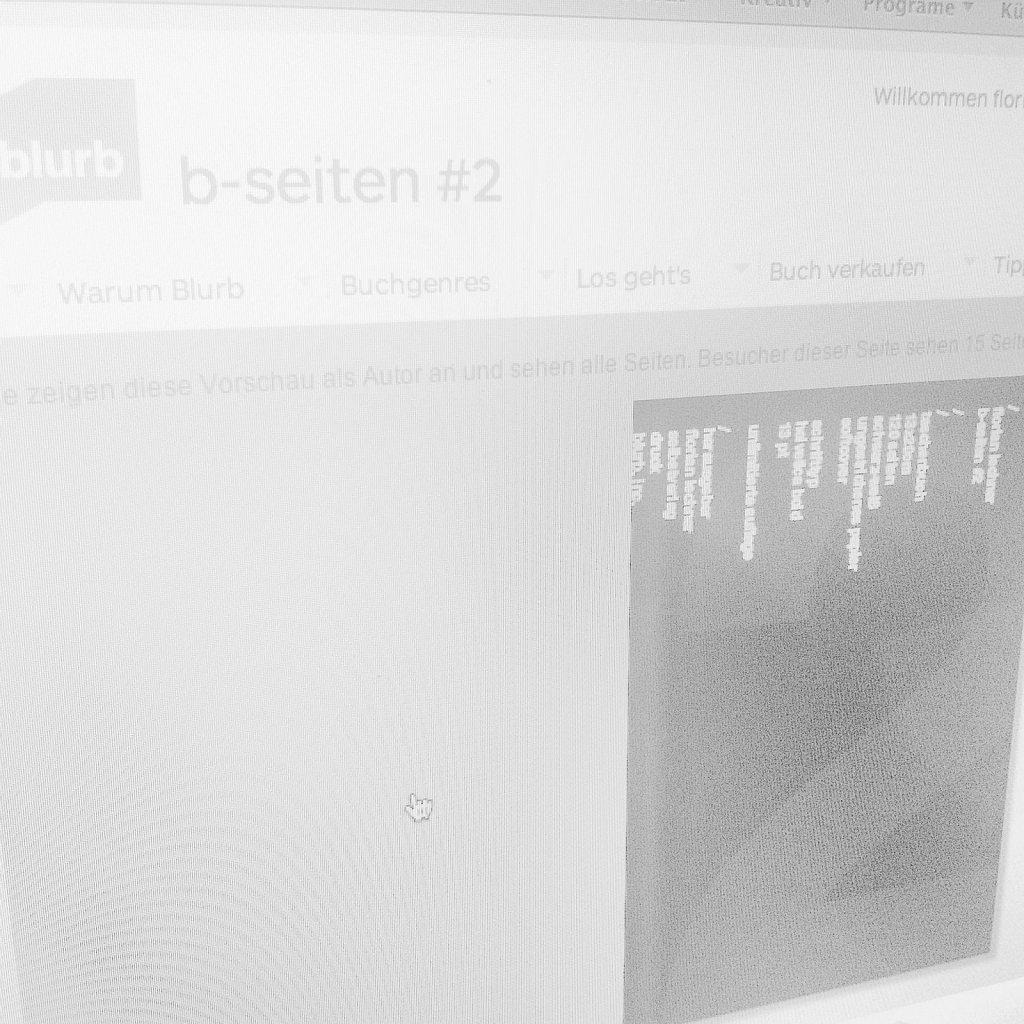 b-seiten 2 Florian Lechner